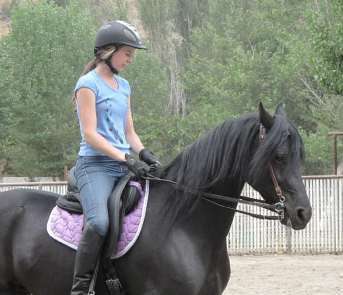 Rider Coaching